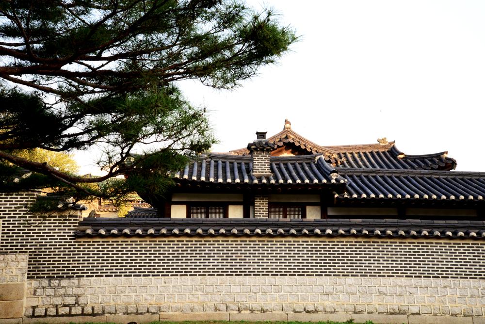 korea49